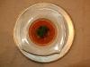 Gazpacho: Planta