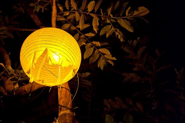Las lámparas del jardín...