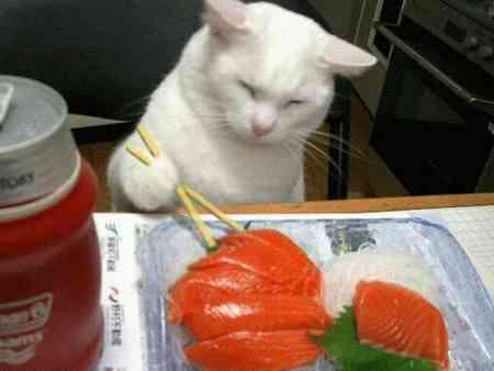 ComiendoComida.com: Chopsticks mode ON!!